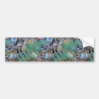 Abstract Frost-covered fern on the forest floor Bumper Sticker