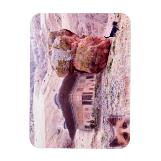 "Abstract Funny Collage 3""x4"" Photo Magnet"