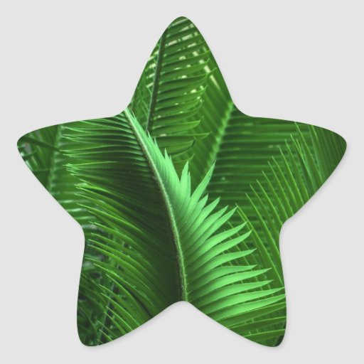 Abstract Green Leaves Star Sticker