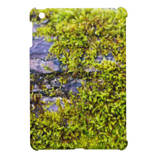 abstract green moss_on wood in winter iPad mini cases