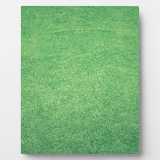 Abstract green plaque
