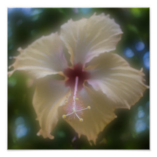 Abstract Hibiscus Flower Poster
