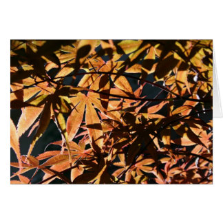 Abstract & japanese Maple Greeting Card