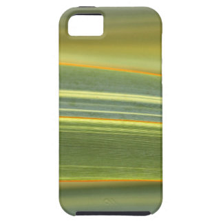 abstract leaves from the flower gift collection case for the iPhone 5