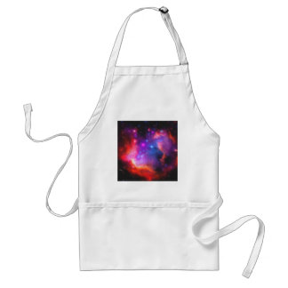Abstract Nebula of Magellanic Cloud Standard Apron