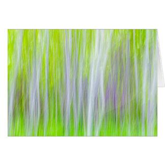 Abstract of Aspen Trees | Yakima River Trail, WA Card