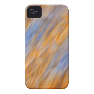 Abstract of autumn leaves and sky iPhone 4 Case-Mate cases