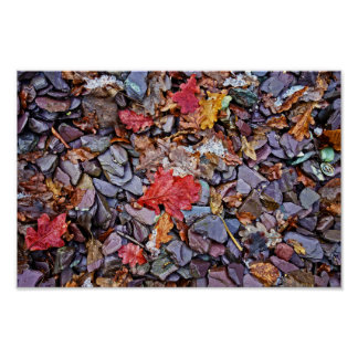 Abstract Stones and Leaves Poster