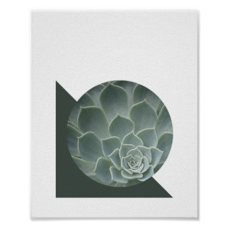 Abstract Succulent Poster | 8x10