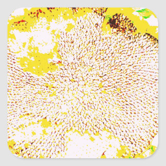 Abstract Sunflower Head Seeds Photo Design Square Stickers