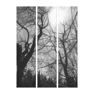 Abstract tree sun black & white photo canvas