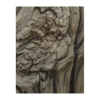 Abstract Tree Trunk Texture Wood Prints