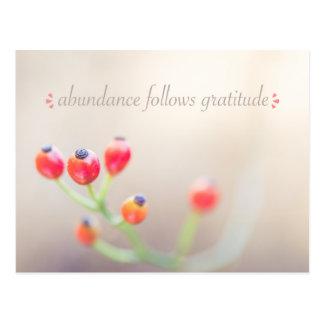 Abundance Follows Gratitude Postcard