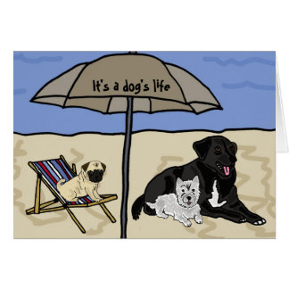 AC- It's a Dog's Life Notecards Card