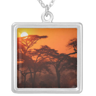 Acacia forest silhouetted at sunset, Tarangire Necklace