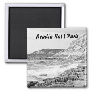 Acadia Shore Sketch Magnet