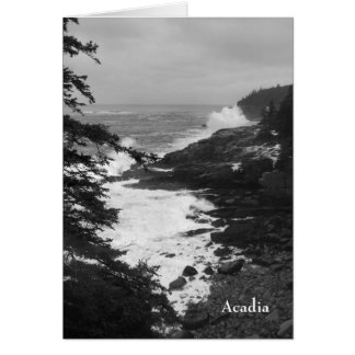 Acadia Surf Notecard - 8