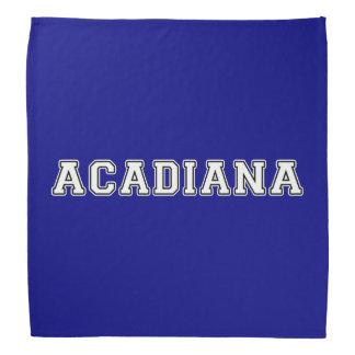 Acadiana Bandana