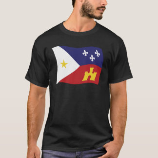 Acadiana Flag Shirt