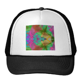 accesories hat
