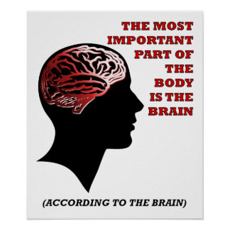 According to the Brain Funny Poster