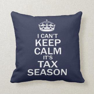 Accountant -Tax Season Cushion