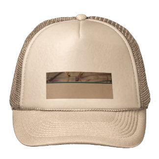 Accounting 2 trucker hat