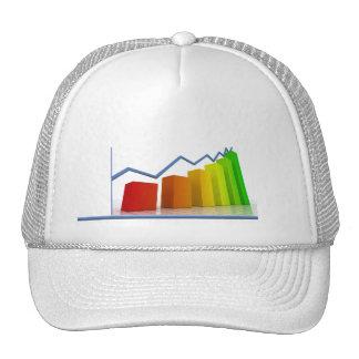 Accounting 7 mesh hat