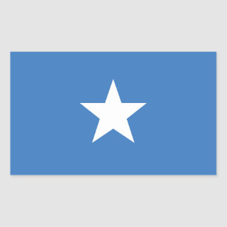 ACCURATE Bonnie Blue Flag Glossy Rectangle Sticker