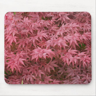 acer palmatum leaves mouse pad