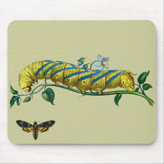 Acherontia atropos caterpillar, Acherontia atropos Mouse Pad