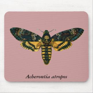 Acherontia atropos mouse pad