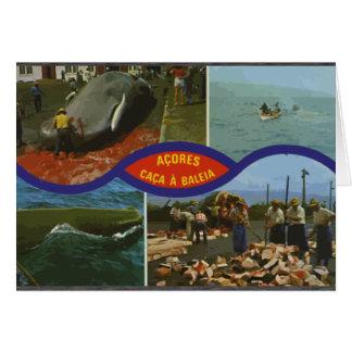 Acores Caca A Baleia, Vintage Cards