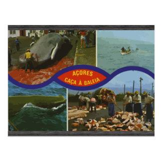 Acores Caca A Baleia, Vintage Postcard