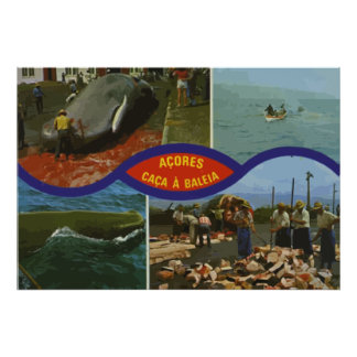 Acores Caca A Baleia, Vintage Poster