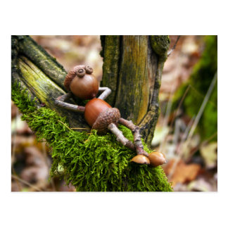 Acorn elf resting on the branch postcard