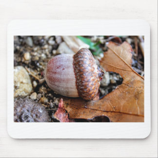 Acorn Resting Mouse Pad