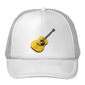 Acoustic Guitar Player Guitarist Hat