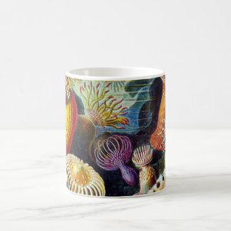 Actiniae by Ernst Haeckel Coffee Mug