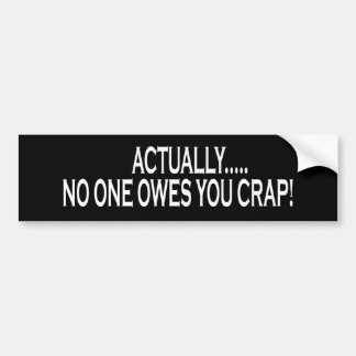 Actually No One Owes You Crap Bumper Sticker