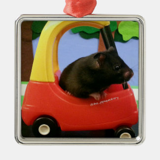 Ada Learns to Drive! Metal Ornament