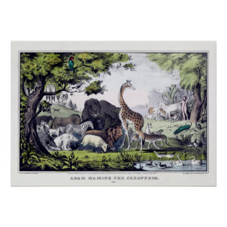Adam Names The Animals Vintage Poster