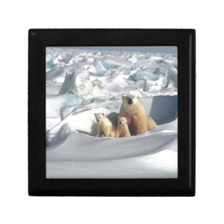 Add SLOGAN to Save Arctic Polar Bears Planet Ice Gift Box