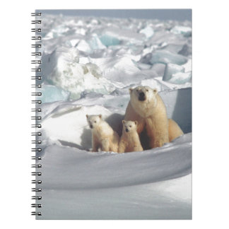Add SLOGAN to Save Arctic Polar Bears Planet Ice Notebook