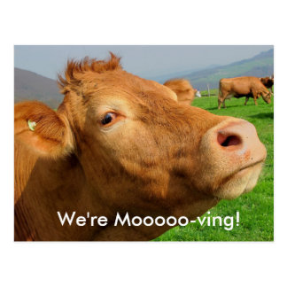 "Add your Address to this ""We're Moooving"" Postcard"