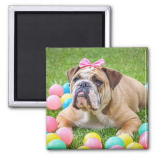 Add your Dog's Photo to this Magnet! Magnet