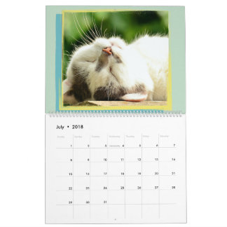 Do it yourself calendars zazzle add your family photos do it yourself calendar solutioingenieria Gallery
