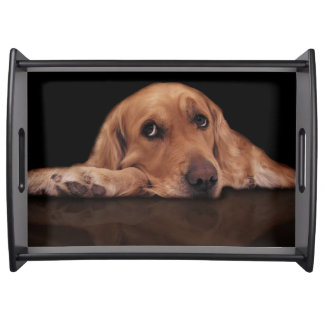 Add your favourite dog photo serving tray