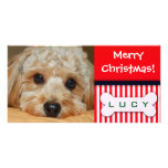 Add your favourite dog photo to this Christmas tem Picture Card