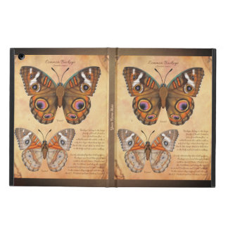 Add Your Name Common Buckeye Butterfly iPad Air Case